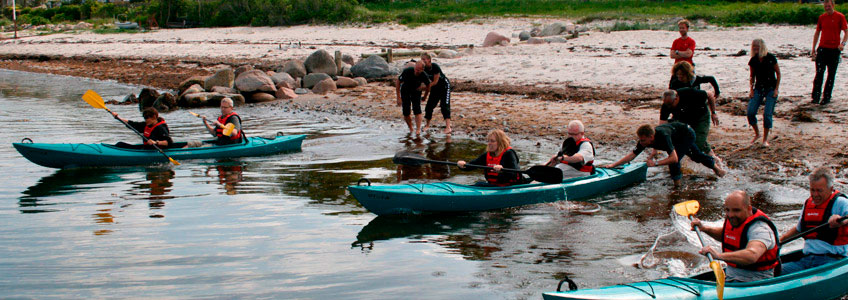 Sea kayaking on Vejle Fjord is a fun and popular activity for meeting participants